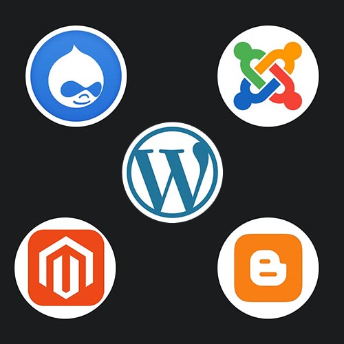 The most popular CMS in 2019 - Brightery